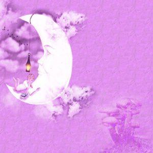 moon-1352323_640